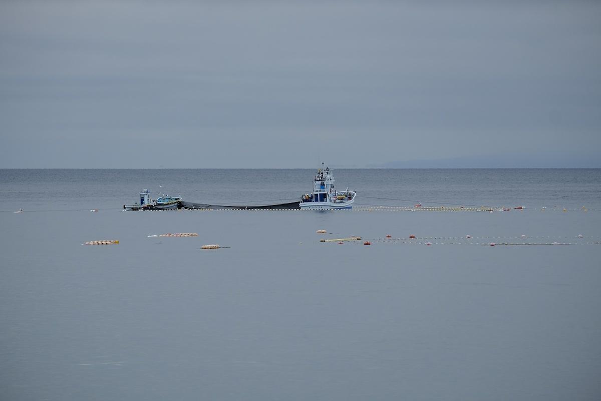 潮の香りがする朝の青い空気を吸いに来ました。_e0051186_09581370.jpg