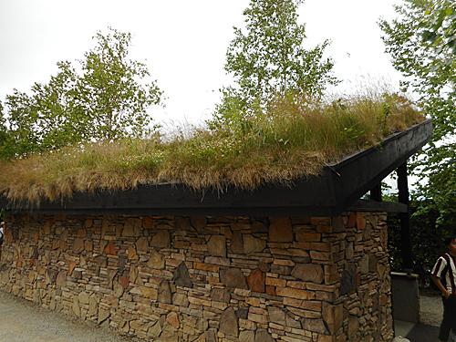 草屋根の建築_e0066586_07282401.jpg