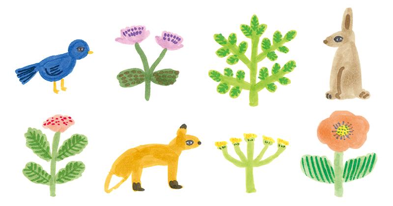 動物と植物_b0199592_16473033.jpg