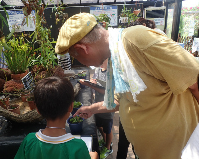 「夏休み植物画展」開催のご報告ヾ(≧▽≦)ノ_f0203094_15364999.jpg