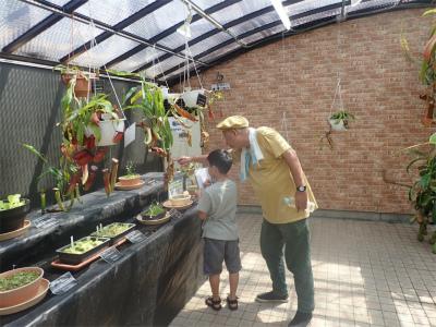 「夏休み植物画展」開催のご報告ヾ(≧▽≦)ノ_f0203094_15383091.jpg