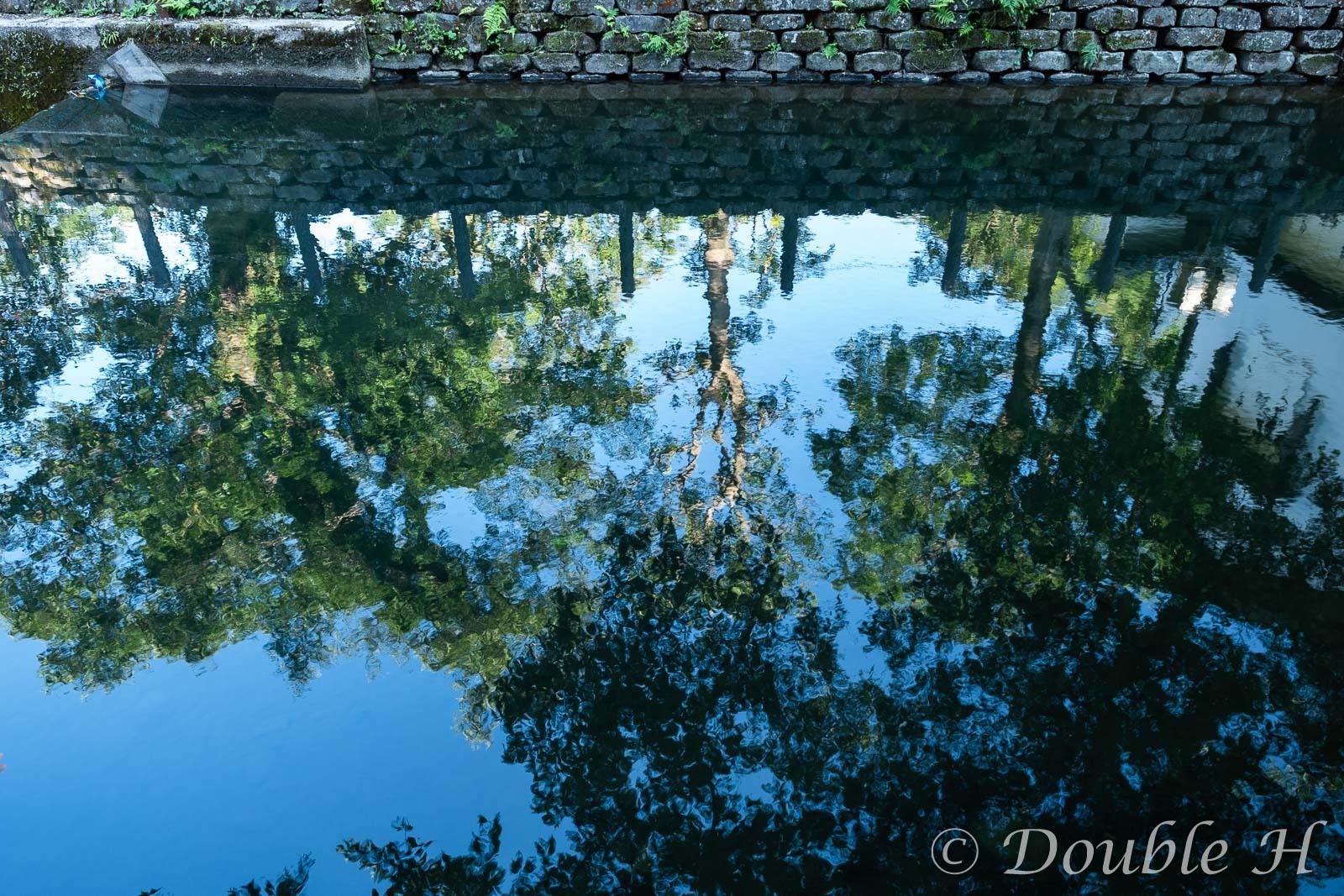 川面に映る街路樹_e0401296_18132241.jpg