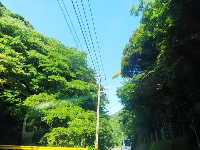 夏だー!  248_b0239402_16072867.jpg