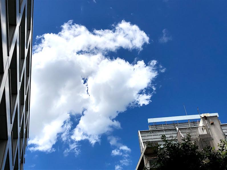 """《空と雲》青い空と、""""嬉しい!""""と、""""坂""""のおはなし_b0298740_13414935.jpg"""