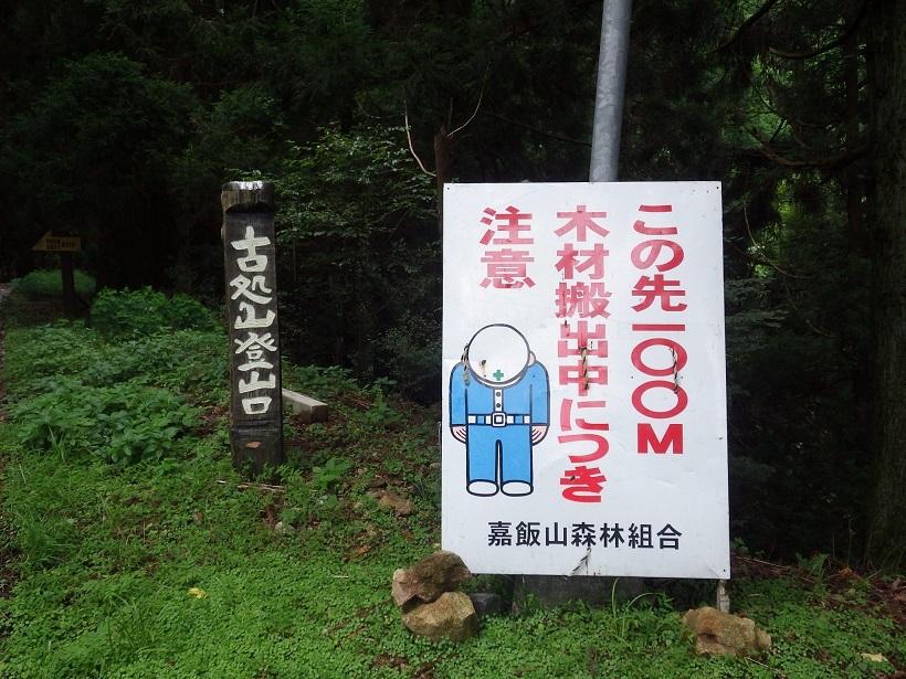古処山へギンバイソウ他_e0164643_14093454.jpg