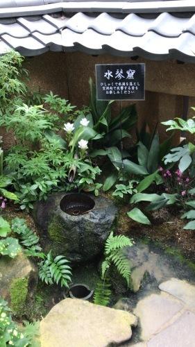 奇跡の星の植物園 その2_c0335145_08465674.jpeg