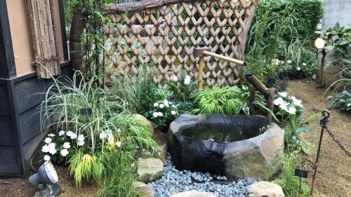 奇跡の星の植物園 その2_c0335145_08525405.jpeg