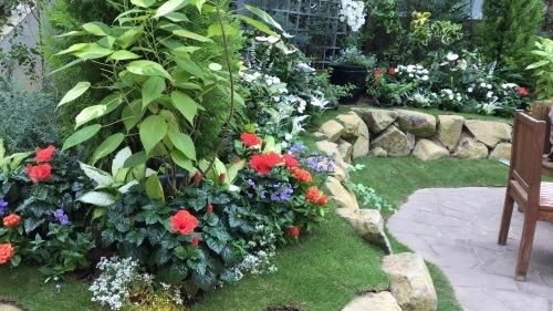 奇跡の星の植物園 その2_c0335145_08561120.jpeg