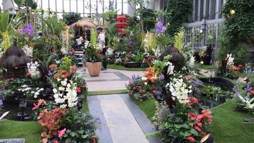 奇跡の星の植物園 その2_c0335145_08563193.jpeg