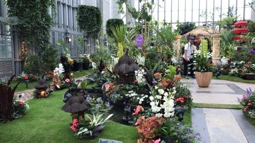 奇跡の星の植物園 その2_c0335145_08565162.jpeg