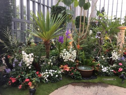 奇跡の星の植物園 その2_c0335145_09035001.jpeg