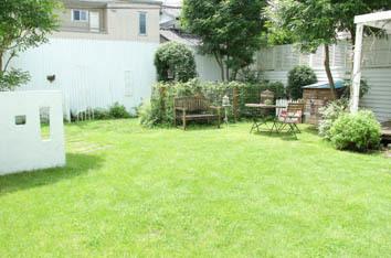 7月19日の芝生*_a0184348_12030132.jpg
