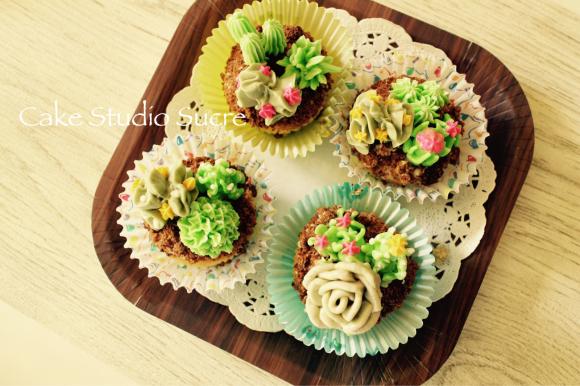 サキュレントカップケーキのクラスでした!_e0111355_16493046.jpg