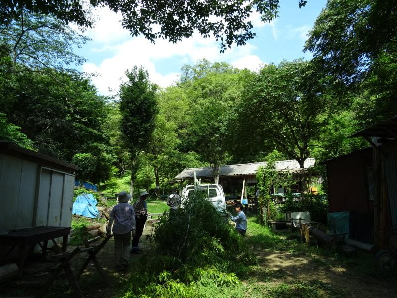 猛暑日は作業にならず・・・孝子の森_c0108460_17562353.jpg