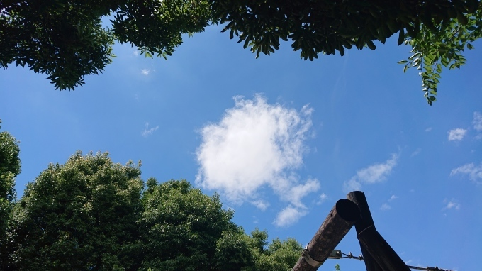 織り教室&三浦百恵さんの本♪_f0374160_22233489.jpg