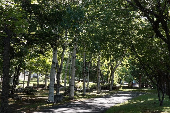 緑道公園_d0162994_05301243.jpg