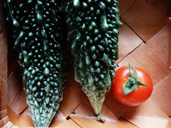 梅雨時にゴーヤをたくさん収穫できました。_c0195909_09230909.jpg
