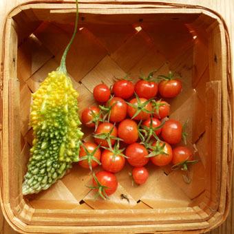 梅雨時にゴーヤをたくさん収穫できました。_c0195909_09231447.jpg