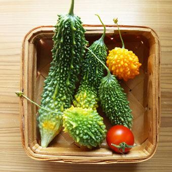 梅雨時にゴーヤをたくさん収穫できました。_c0195909_09232670.jpg