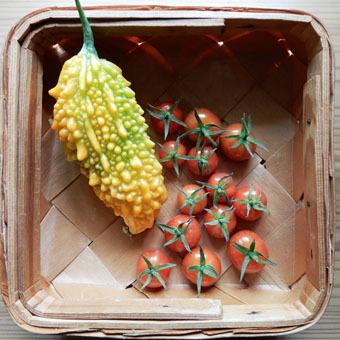 梅雨時にゴーヤをたくさん収穫できました。_c0195909_09235035.jpg