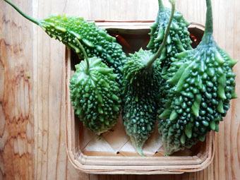 梅雨時にゴーヤをたくさん収穫できました。_c0195909_09241921.jpg