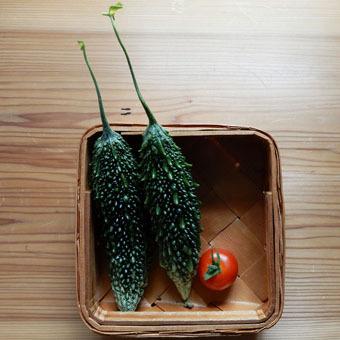 梅雨時にゴーヤをたくさん収穫できました。_c0195909_09244528.jpg