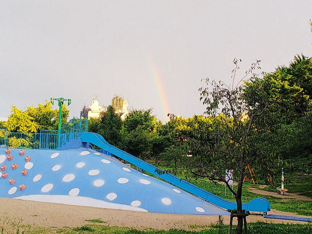虹が出ていました。_a0098418_14264508.jpg