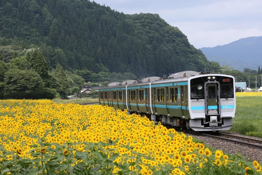 ヤマユリ_c0111229_19183937.jpg