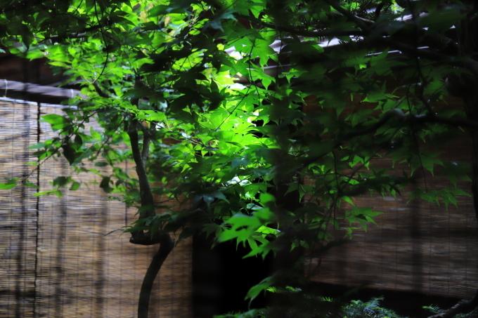 【奈良井宿/上問屋史料館】長野合宿 - 11 -_f0348831_15454250.jpg
