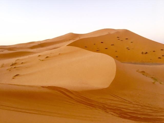 サハラ砂漠inモロッコ_a0171939_18365544.jpg