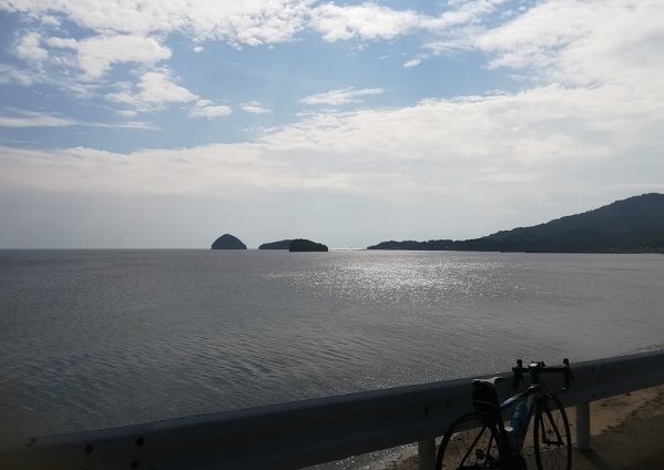 島田島の古代蓮とランチ その1_b0149340_19502229.jpg