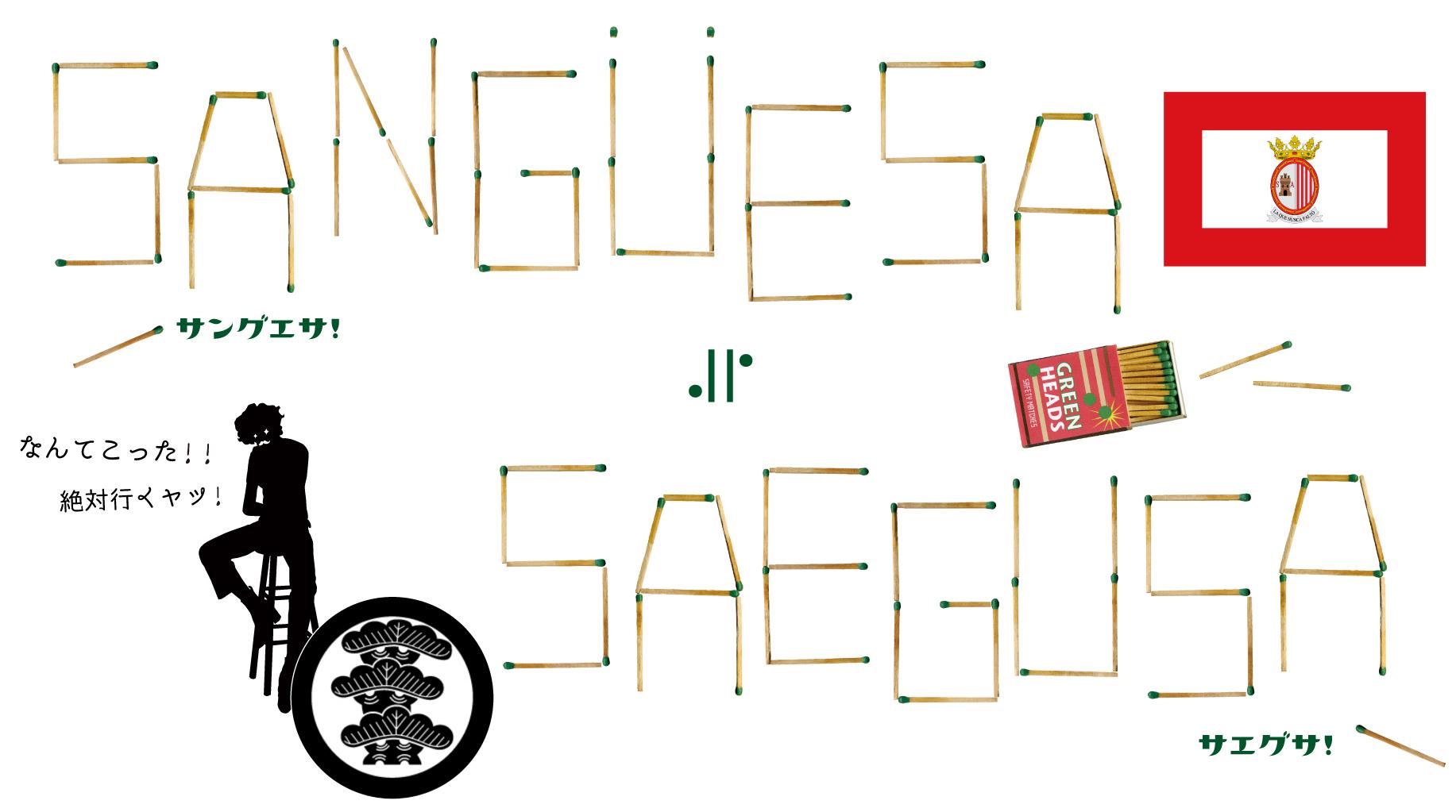 【驚愕の発見】ほぼほぼ「サエグサ」な町がスペインにあった!⇒『Sangüesa / Zangoza(サングエサ / サンゴサ)』!!_d0018646_23503893.jpg