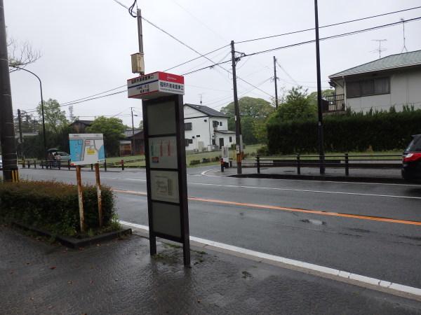 福岡城跡_f0337554_11113525.jpg