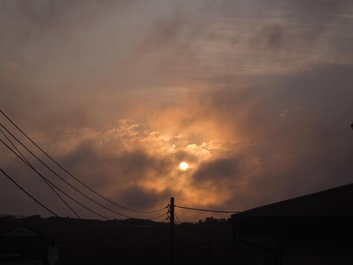 台風6号三重県上陸、鎌倉では。_b0022268_19162879.jpg