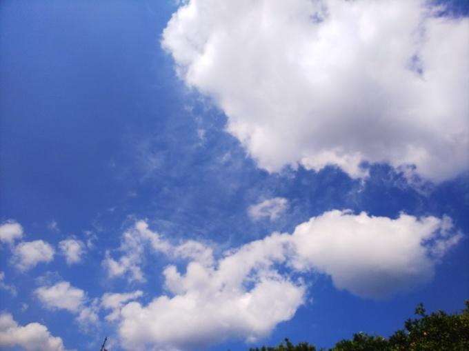 夏だー!   246_b0239402_17313217.jpg