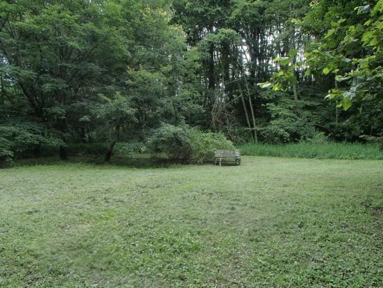 これでやっと全ての草刈り芝刈り完了!_f0064906_16534727.jpg