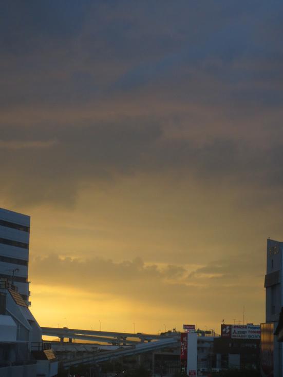 ■アブラゼミ全盛、そこに一匹のクマゼミが――週替わりの夕暮れ[7/24-28]_d0190217_22113572.jpg