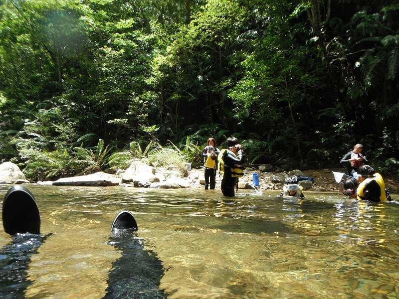 夏のカヌーと川遊びやってます♪_f0121321_13124264.jpg