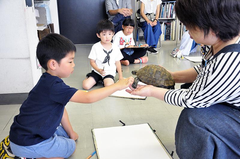 リクガメと卵を写生しよう_b0212226_22515758.jpg