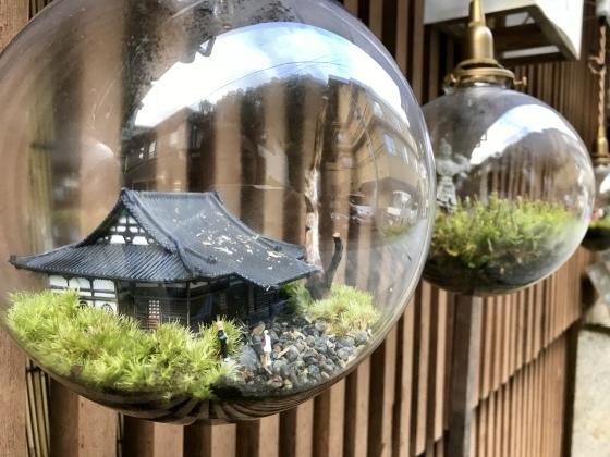 渋温泉 志賀高原ビール タングラム 海鮮丼_b0132338_15503087.jpeg