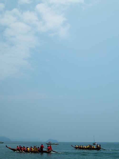びわ湖高島ぺーロン大会、デマシタ!・・・親ガモと七匹のコガモ_d0005250_1841687.jpg