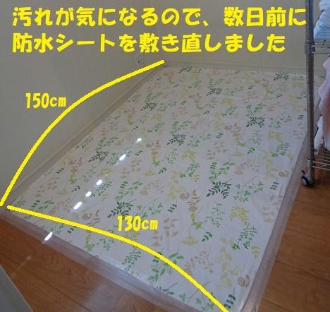 f0121712_00560748.jpg