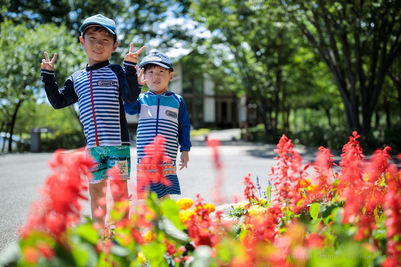 令和元年夏休み ちびっ子兄弟の水遊び!!「福岡堰さくら公園」_c0369219_12491636.jpg