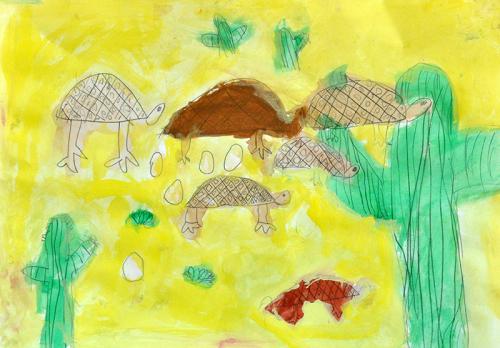 リクガメと卵を写生しよう_b0212226_20514096.jpg