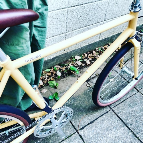 2020 RITEWAY 『 STYLES 24 』スタイルス 24インチ グレイシア ライトウェイ シェファード パスチャー シェファードシティ クロスバイク 自転車女子 おしゃれ自転車_b0212032_18040914.jpeg