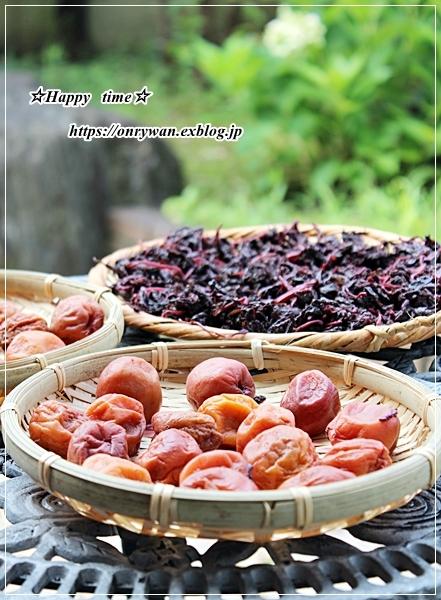 OLさんへ、鮭と枝豆のおむすび弁当と土用干し2日目♪_f0348032_16444634.jpg