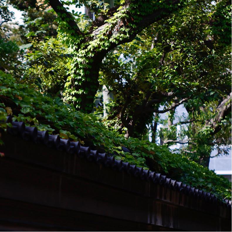 オールドレンズで神保町から神田、御茶ノ水、末広町へ_c0060143_13470562.jpg