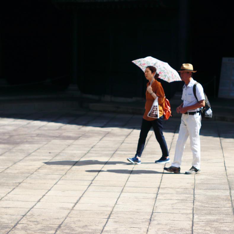 夏の湯島聖堂_c0060143_13484068.jpg