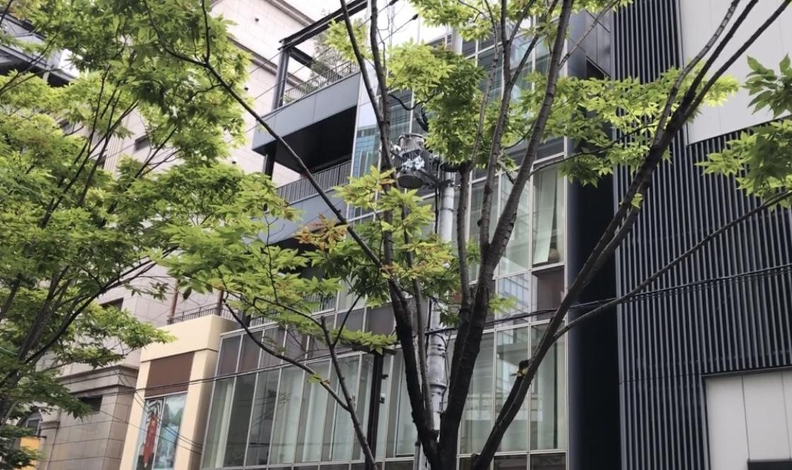 大阪、ザファームに行く。_c0335145_21515201.jpeg