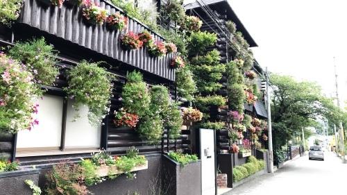 大阪、ザファームに行く。_c0335145_22004954.jpeg
